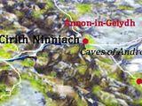 Cirith Ninniach (Beleriand)