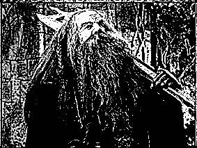 Dwarfguard.jpg