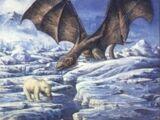 Northern bears