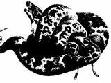Egil's Vipers
