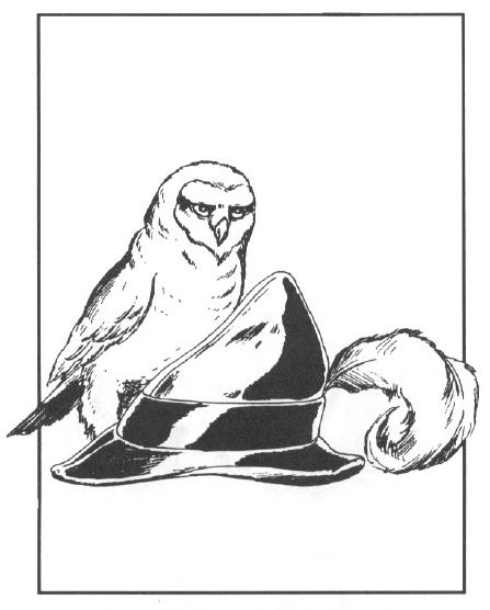 Barrow Owls