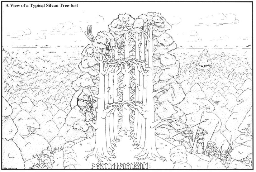 Elvish Glades
