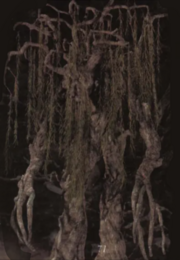 Willowent.png