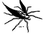 Spider-Eagle