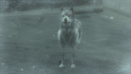 A wolf in the snowfield (Metal Gear Solid 4)