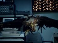 Wsp29-Giantbird