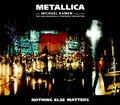 Nothing Else Matters '99 (single)