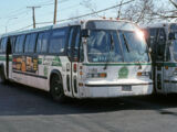 Green Bus Lines