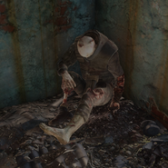Night Hunter Corpse - Pool