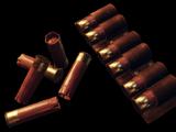 12x70 Buckshot