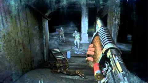 Dungeon (Metro 2033 Level)/Walkthrough