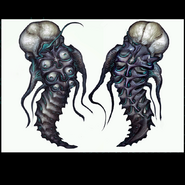 Chykka larva