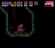 Pink Zebesian