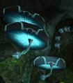 Saturninos en la superficie de tallon