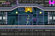 Golden Sciser-X MF