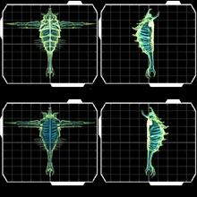 Demo Parasite Queen perspectives scanpics.png