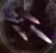 Luciferina oscura mp2
