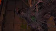 Criatura Misteriosa restos MOM