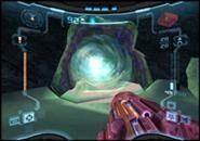 Portal de Luz1