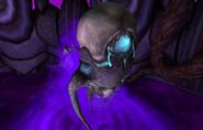 Chuca larva MP2