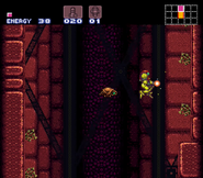 Ripper Super Metroid