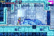 Frozen Ridley 02 MF