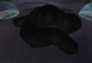 Amorbis durmiendo MP2
