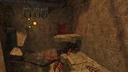 Chozo Ruins Screenshot (82)