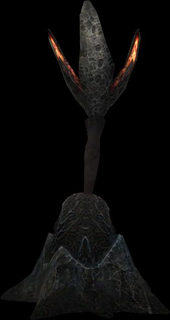 Sporb