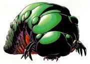 Kirugiru larva.jpg