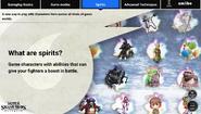 SSBU Spirits Website
