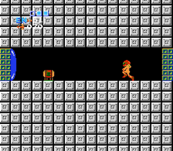 Artificial Passage Metroid.png