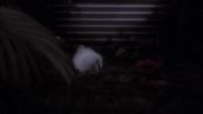 Breeding Room - Little Birdie plays dead