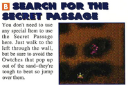 Search for the Secret Passage