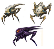 Splinter concepts2