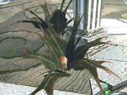 Arbusto spaikk1
