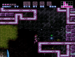 West Cactus Alley Room.png