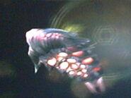 Guardián-aracnosfera1