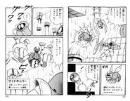 Baristute pit Victory Techniques for Metroid pg. 142-143