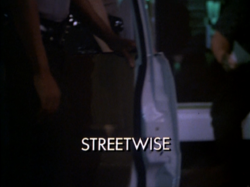 Streetwisetitle.PNG