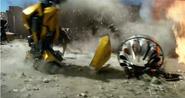 Bumblebee Reshaping TLK