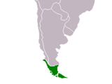 Patagonia conflict