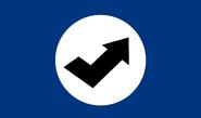 Finnzkies flag-Bluenazi version