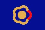 Flag Yungshin
