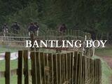 Bantling Boy