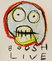 Boosh live.jpg