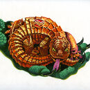 Lashes Lizard