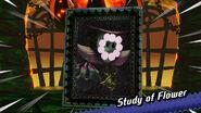 Study of Flower