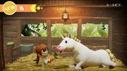Horse-event
