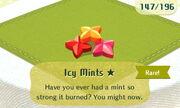 Icy Mints 1star.JPG